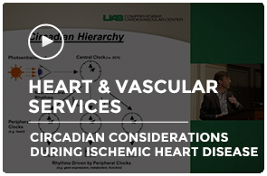 Circadian ischemic heart disease young